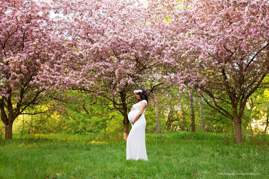 A background of sunshine and Edmonton cherry blossoms trees for a pregnant mother's maternity photo shoot