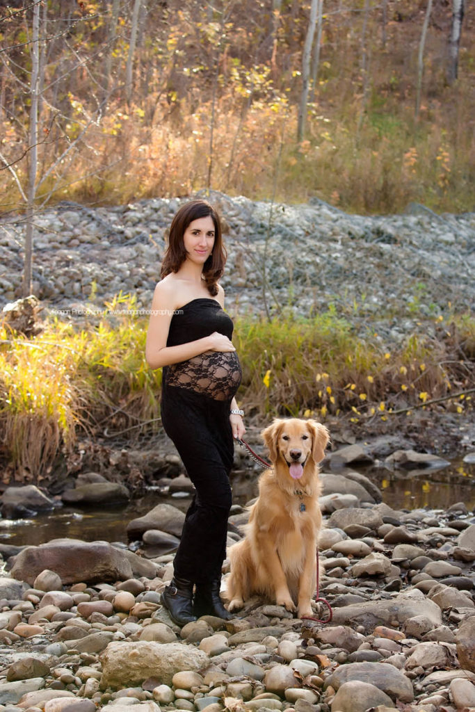 Wearing a black lace maternity gown is a women and her golden lab dog in Edmonton