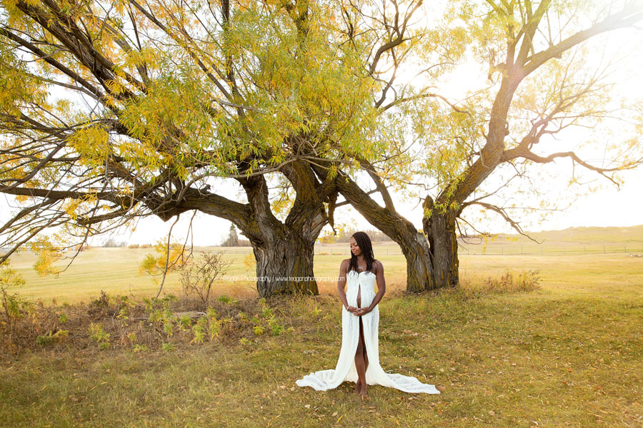 An African woman wearing a long white maternity gown poses during maternity photos in front or a large willow tree in Edmonton